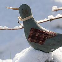 oiseaux-blandine-delepine
