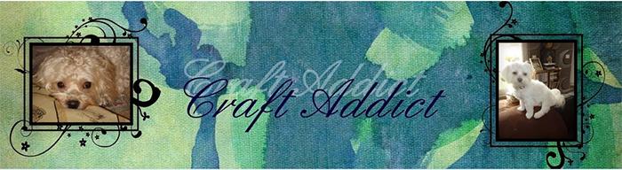 craft-addict