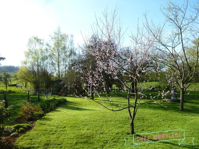 atelier patchwork jardin avril 2015 (14)