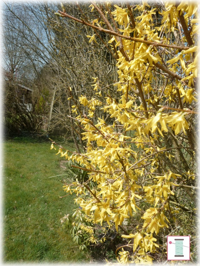 atelier patchwork jardin avril 2015 (9)