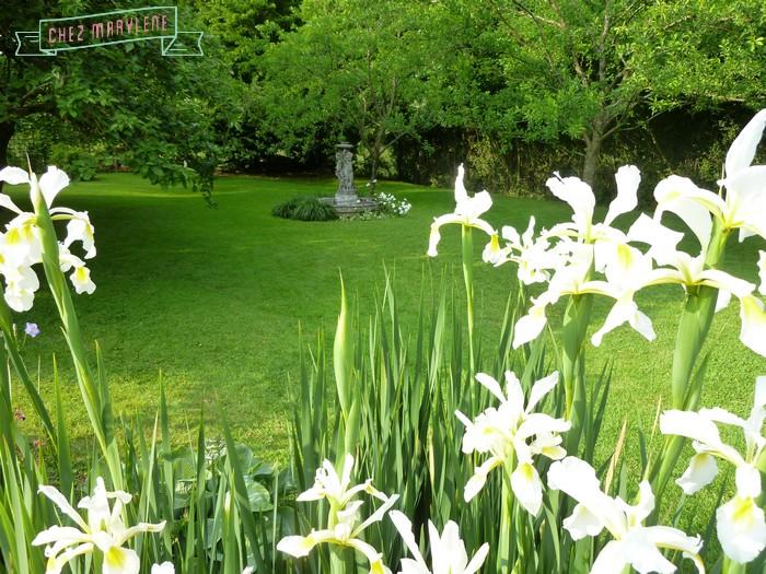 jardin blanc 8