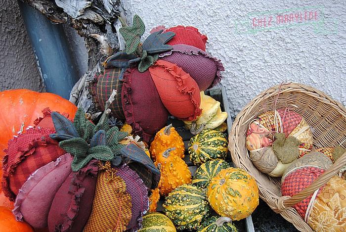 Potiron textile (5)