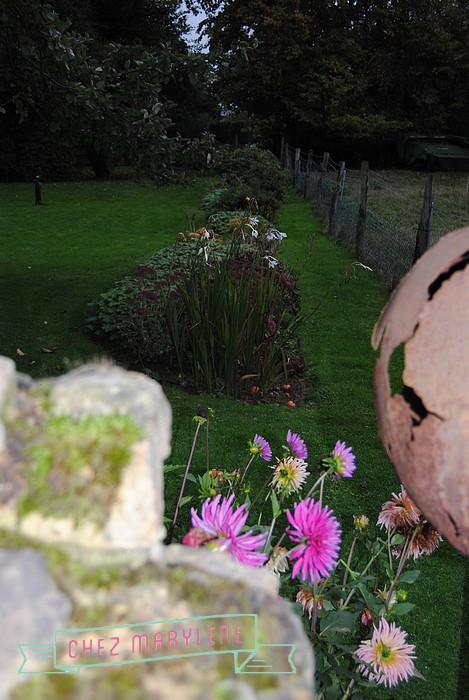 jardin d'automne (17)