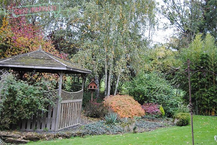 jardin d'automne (3)