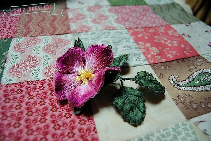 rose briar (3)