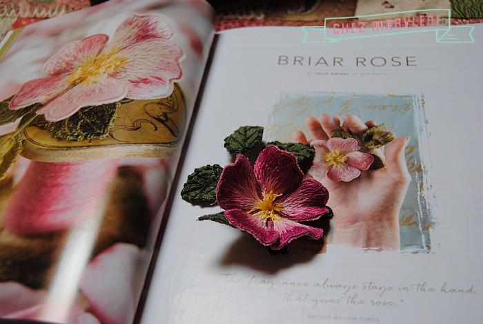 rose briar (6)