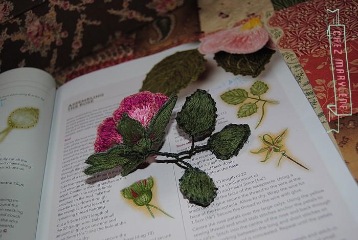 rose briar (8)
