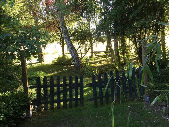 jardin-juin-201729
