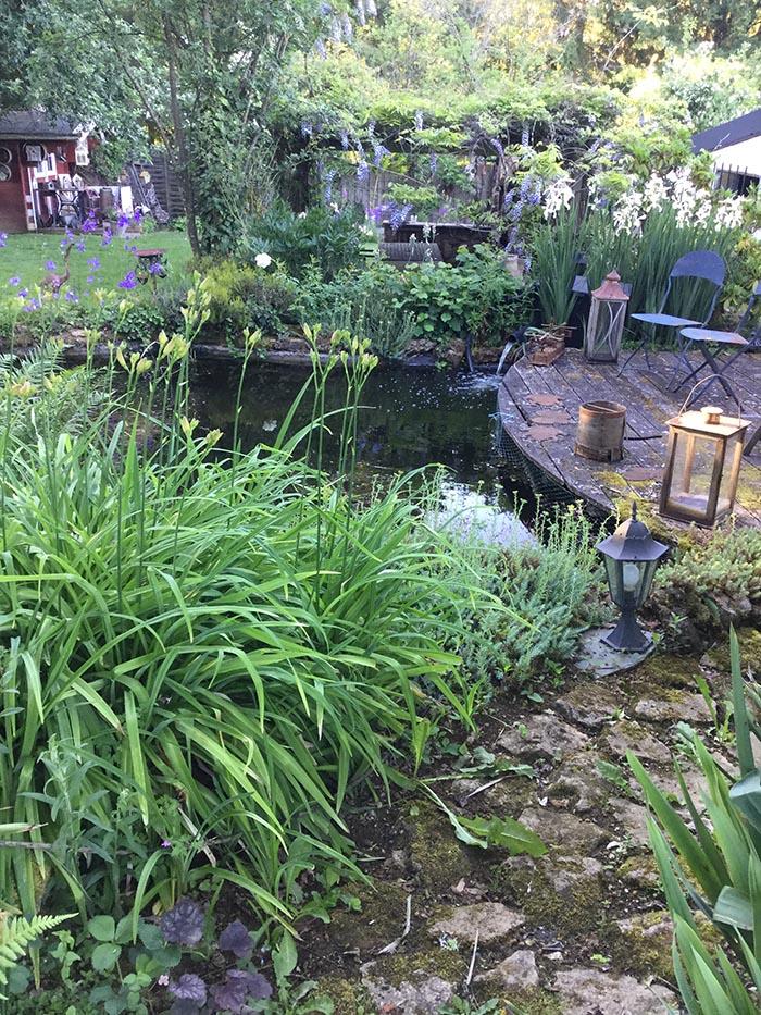 jardin-juin-201762