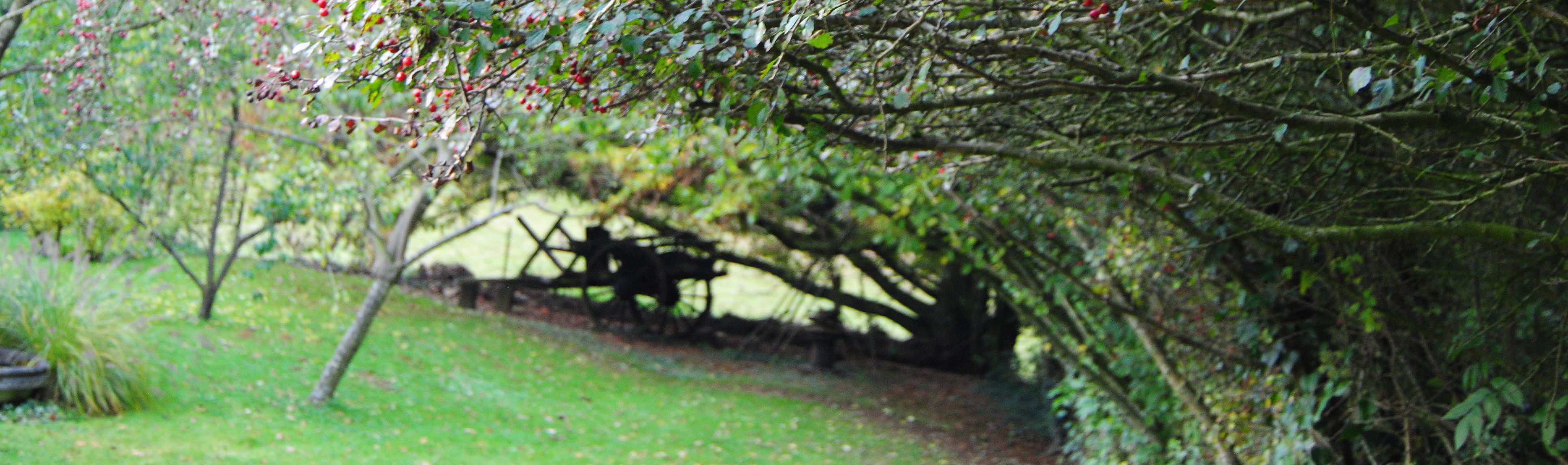 Atelier patchwork point compt octobre au jardin for Jardin octobre